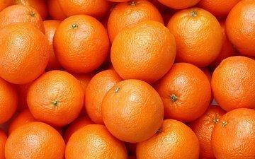 еда, фрукты, апельсины, апельсин, цитрусы