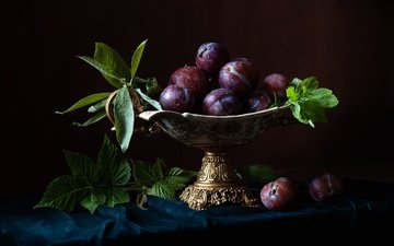 leaves, drops, fruit, vase, still life, plum