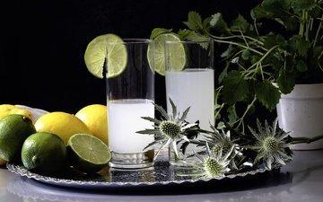 напиток, лимон, лайм, коктейль, стаканы, цитрусы, лимонад