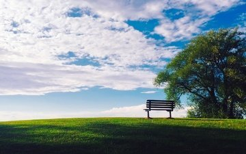 небо, трава, облака, солнце, дерево, зелень, лето, скамейка, лужайка, газон