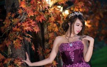 природа, листья, стиль, девушка, настроение, фон, взгляд, осень, клен, азиатка