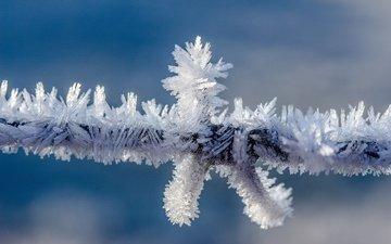 природа, зима, мороз, проволока, иней, колючая проволока, провод, кристаллы