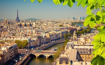 river, leaves, branches, the view from the top, home, paris, france, bridges, eiffel tower