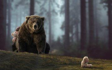 лес, ситуация, медведь, мишки, девочка