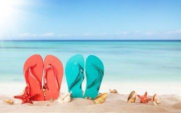 солнце, море, песок, пляж, лето, ракушки, морская звезда, каникулы, сланцы, шлепки, вьетнамки