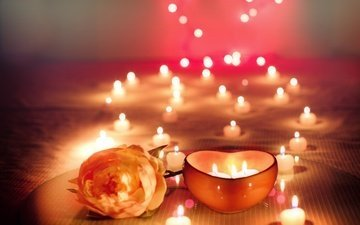 candles, flower, rose, holiday, bokeh