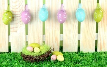 grass, the fence, board, spring, easter, eggs, socket