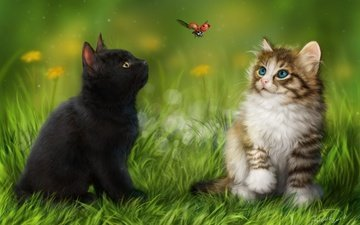 grass, insect, animals, ladybug, cats, kittens