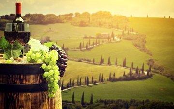виноград, пейзаж, поля, италия, вино, бутылка, бокалы, бочка, тоскана