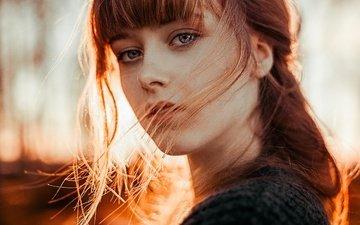 девушка, портрет, взгляд, модель, волосы, лицо, локоны, рыжеволосая