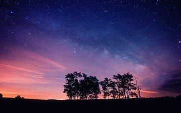 небо, ночь, деревья, закат, звезды, силуэты