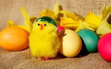 flowers, toy, easter, eggs, daffodils, chicken