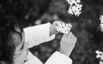 flowers, tree, flowering, black and white, children, girl, spring, hair, face