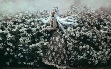 цветение, стиль, девушка, настроение, платье, кусты, голубые волосы, bella kotak, jodi lakin