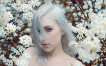 цветение, девушка, взгляд, модель, весна, волосы, kindra nikole