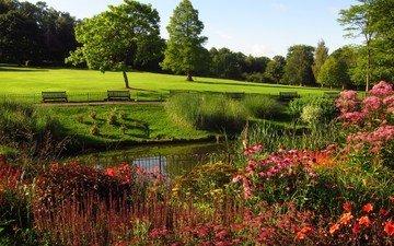 flowers, trees, park, london, benches, meadow, england, hampstead heath