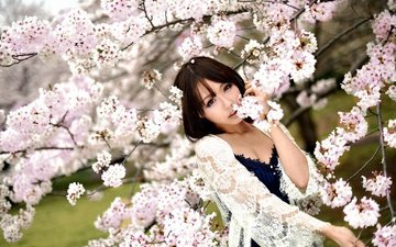 цветение, девушка, настроение, взгляд, весна, сакура, азиатка, восточная