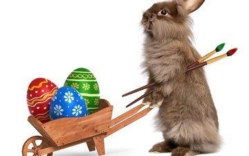 кролик, пасха, яйца, кисти, крашенные яйца