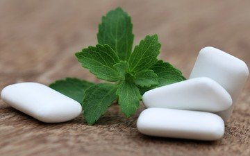 mint, leaves, pads, gum, chewing gum