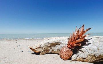 небо, берег, море, пляж, ананас