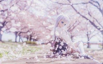 mood, petals, toy, doll