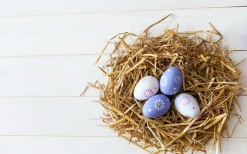 easter, straw, socket, the painted eggs