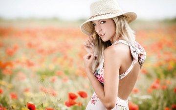 девушка, блондинка, поле, взгляд, маки, спина, волосы, шляпка