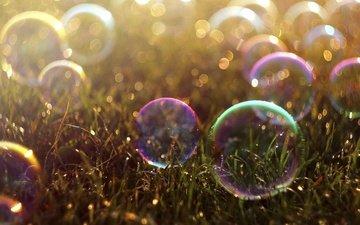 трава, цветные, мыльные пузыри, боке