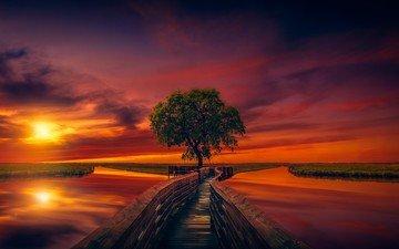 небо, трава, облака, река, дерево, закат, пирс, помост