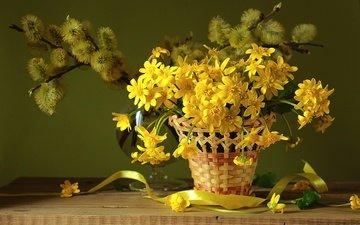 цветы, весна, букет, корзина, лента, натюрморт, первоцвет, верба