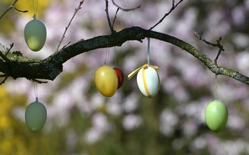 branch, tree, easter, eggs, holiday