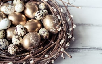 branches, spring, easter, socket, verba, the painted eggs, quail eggs