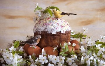 flowers, cherry, easter, glaze, birds, cake, eggs