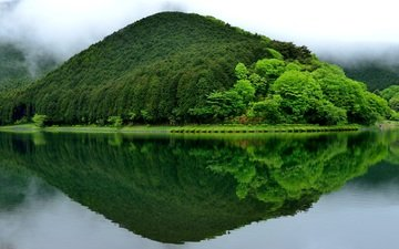 trees, greens, reflection, landscape, mountain, japan, hill