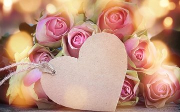flowers, buds, roses, heart, love, romance, pink, valentine's day