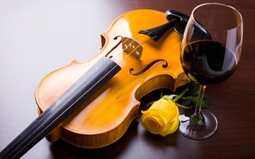 flower, violin, rose, strings, glass, wine, yellow