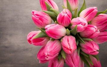 цветы, букет, тюльпаны, розовые, весенние