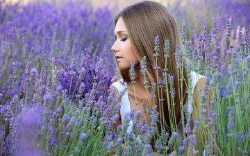 цветы, девушка, поле, лаванда, профиль, волосы
