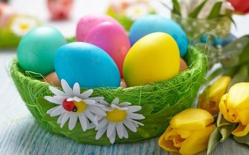 flowers, easter, eggs, basket