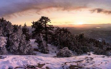 деревья, горы, снег, лес, закат, зима