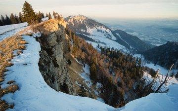 деревья, горы, снег, зима, утро, обрыв
