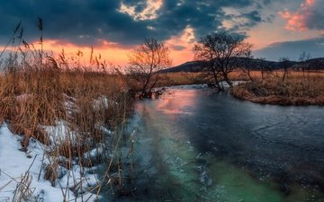 деревья, река, снег, закат, лёд, россия, камыш, приморский край