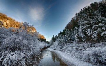 деревья, река, снег, зима, пейзаж, утро