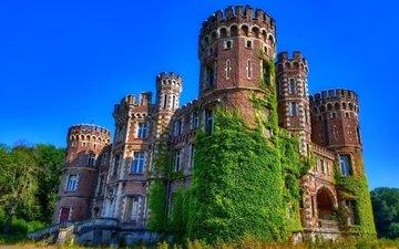 деревья, зелень, замок, бельгия, замок moulbaix, chateau de la foret