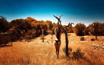 дерево, девушка, брюнетка, спина, фигура