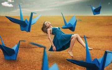 девушка, фон, платье, поле, ножки, журавли
