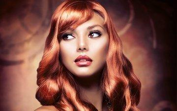 девушка, взгляд, модель, волосы, губы, лицо, макияж, ресницы