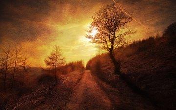 дорога, ночь, деревья, закат, склон