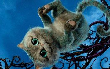 глаза, кот, хвост, приключение, alice through the looking glass, чеширский кот