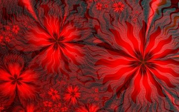 flowers, line, background, pattern, petals, color, red